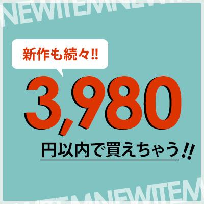 3,980円以内で買えちゃう!!